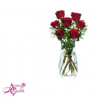 Vazoda Kırmızı Güller 7 gül