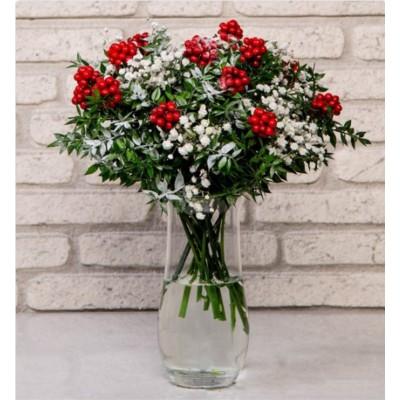 Kokina Yılbaşı Çiçeği