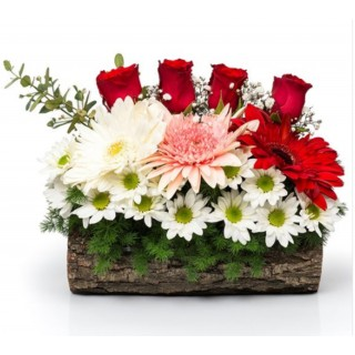 Kütüklü Çiçek Arajmanı