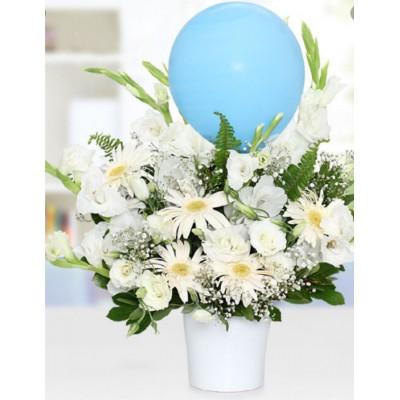 Seramikte Balonlu Bebek Çiçeği