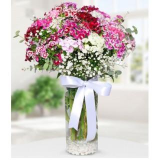 Vazoda Hüsnü Yusuf Çiçeği