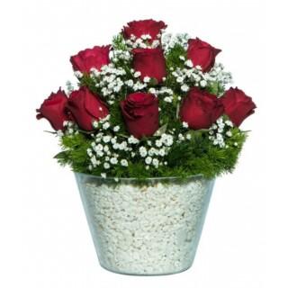 Mika Arajmanda Kırmızı Güller